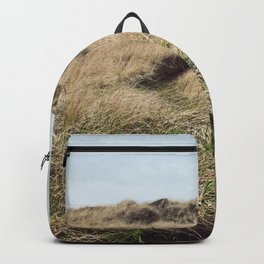 Oregon Dune Grass Adventure - Nature Photography Backpack
