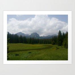 Fields of glory Art Print