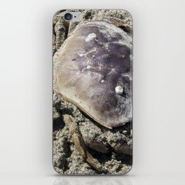 Crab waiting on the tide iPhone Skin