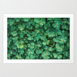 Lucky Green Clovers, St Patricks Day pattern Art Print