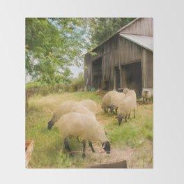 Little Sheep Throw Blanket