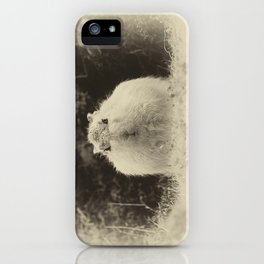 MOUNTAIN HARE iPhone Case