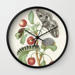 Vintage Botanical Print - Maria Sibylla Merian Wall Clock