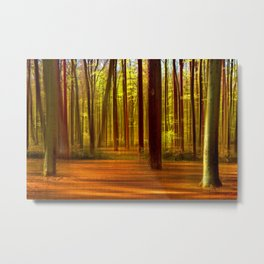 Forest 46 Metal Print