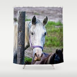 Horse Freckles Shower Curtain