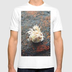 Sealife on the Rocks Mens Fitted Tee White LARGE