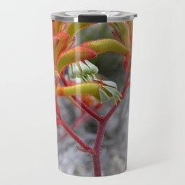 Orange Kangaroo Paw Flowers Travel Mug