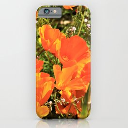 Orange Gold California Poppies by Reay of Light iPhone Case