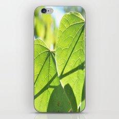Heart leaf iPhone & iPod Skin