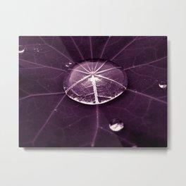 purple water drop XVI Metal Print