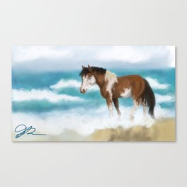 Chincoteague Canvas Print