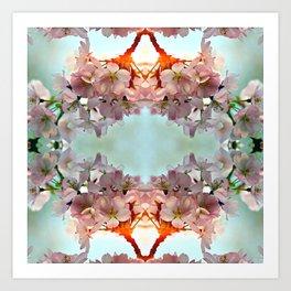Delicate cherry blossoms Art Print