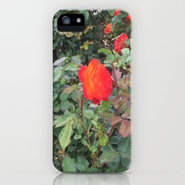 Sunset Rose #1 iPhone Case