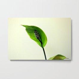 The Green Hoodie Metal Print