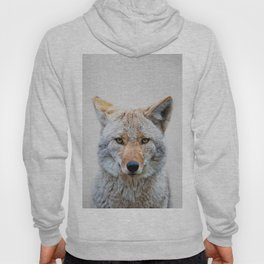 Coyote - Colorful Hoody
