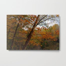 Fall in the Cuyahoga Valley National Park Metal Print