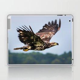 Immature Bald Eagle Laptop & iPad Skin