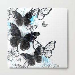 Background with Black Butterflies Metal Print