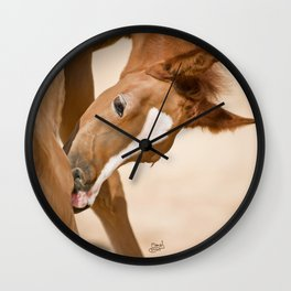 Digital Painting 2 - Colt Wall Clock