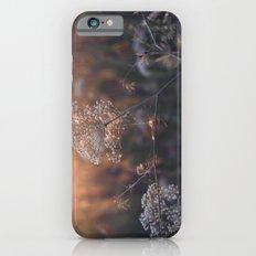 last summer dream  Slim Case iPhone 6s