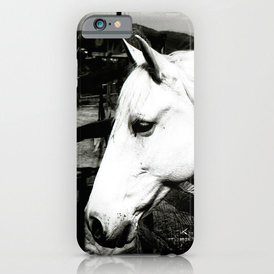 white horse iPhone & iPod Case