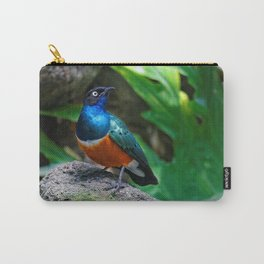 A Stunning African Superb Starling Carry-All Pouch