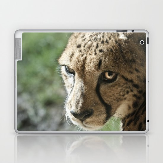 Cheetah Laptop & iPad Skin