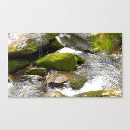 Smokey Mountain National Park Stream Canvas Print