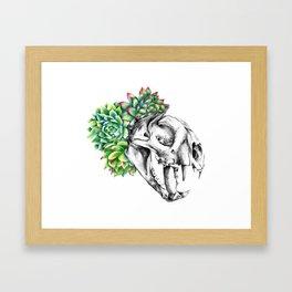 Rock Rose Cat Skull Framed Art Print