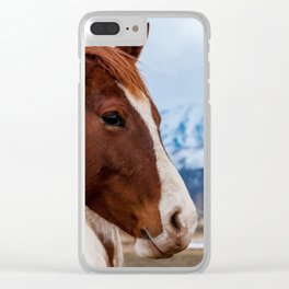 Wasatch Mountains Winter Horse - Heber - Utah Clear iPhone Case