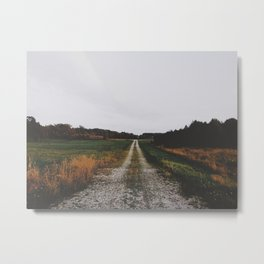 Down the winding road Metal Print