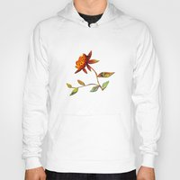 andreas preis Hoodies featuring Sunflower Abstract by Klara Acel