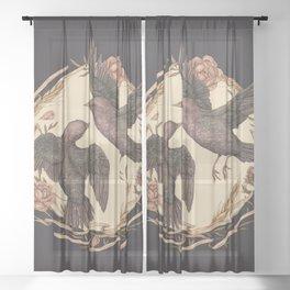 Starlings Sheer Curtain