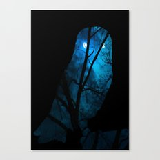 Owl in the Nigh Canvas Print