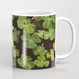 Redwood Sorrel - Nature Photography Coffee Mug