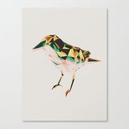 Bird #06 Canvas Print