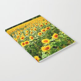 Field of Sunny Flowers Notebook