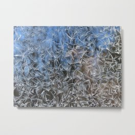 Feathered Ice on a Sunny Day Metal Print