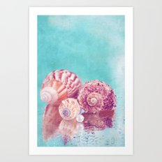 Seashell Group Art Print
