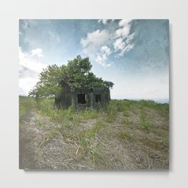 A Forest within Metal Print