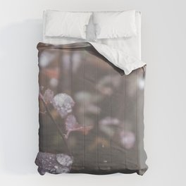 Pink dew faded Comforters