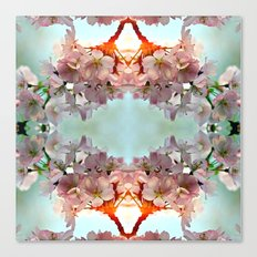 Delicate cherry blossoms Canvas Print