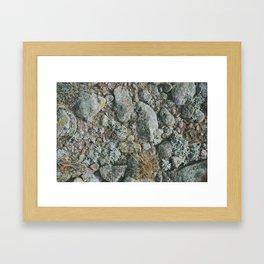 rabbit mountain Framed Art Print