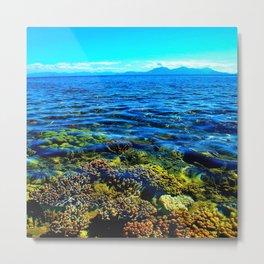 Coral Bed Metal Print
