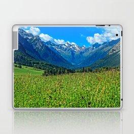Bergwiese mit Talschluss Laptop & iPad Skin