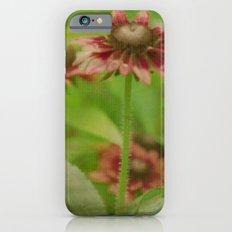 Walk Right Up iPhone 6s Slim Case