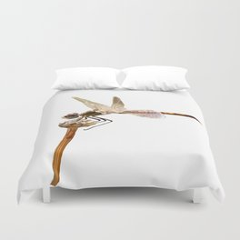 Dragonfly Resting On Seed Head Isolated Duvet Cover