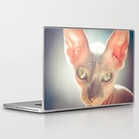 floyd Laptop & iPad Skins featuring Floyd The Cat by Alex DZ