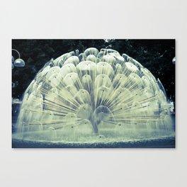 Fountain in Oslo Canvas Print