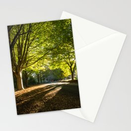 The Avenue, Mount Wilson, Blue Mountains Stationery Cards